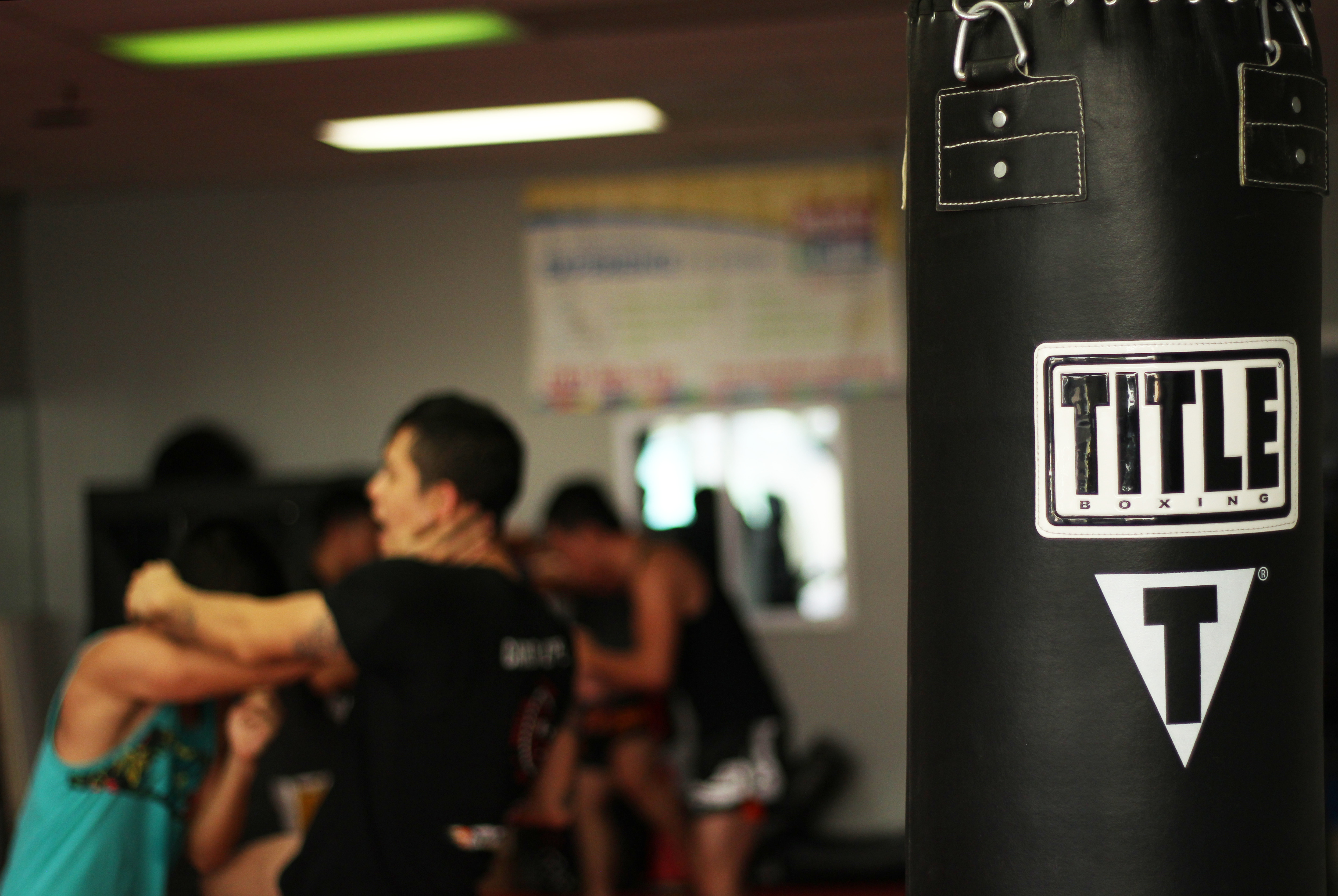 Title Boxing Heavy Bag